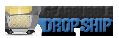 Logo dropship